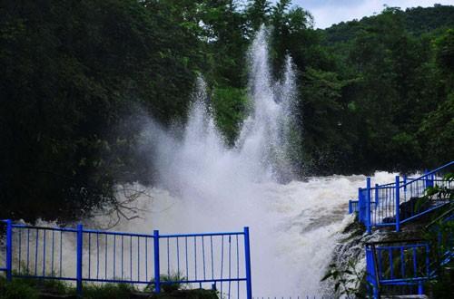 Favis Falls