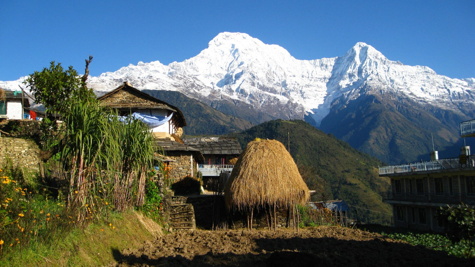 Homestays around Pokhara